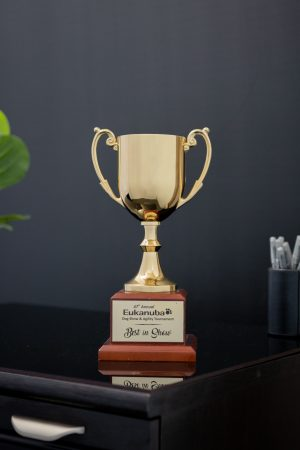 Gold Metal Cup on Wood Base