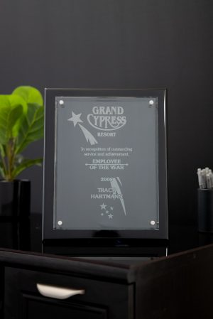 Floating Glass on Black Piano Plaque