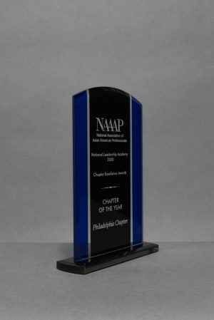 Black and Blue Glass Standing Award